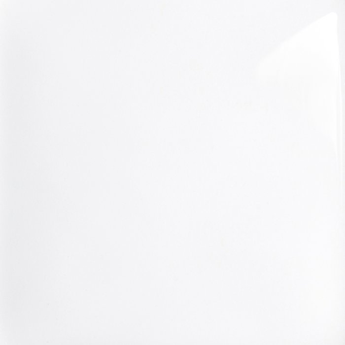 Glossy Alpine White with RAK-ProTeK (9WH)