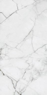 versilia marble Marble High glossy Gres porcelain 120x260cm Domestic Purpose Light Commercial Traffic Area