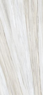 palissandro Marble High glossy Gres porcelain 120x260cm Domestic Purpose Light Commercial Traffic Area