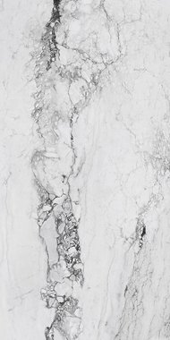 medicea marble Marble High glossy Gres porcelain 120x240cm Domestic Purpose Light Commercial Traffic Area
