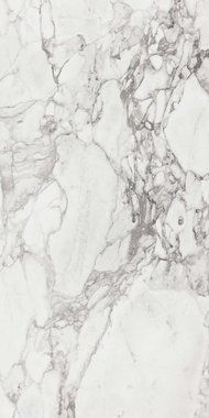 elle marble Marble High glossy Gres porcelain 90x180cm Domestic Purpose Light Commercial Traffic Area